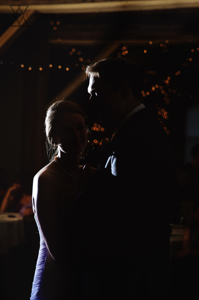 Meagan White Photo - Ali and Alex Wedding 009-2