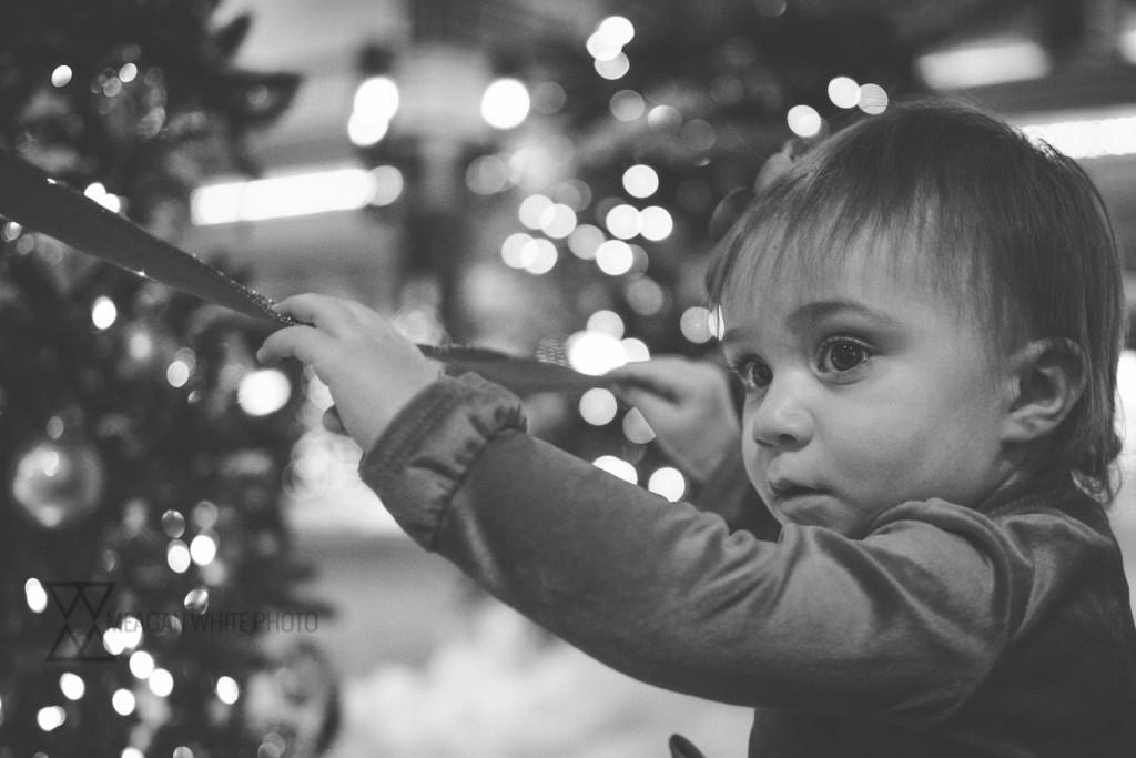 Meagan White Photo - Kimber Christmas 017